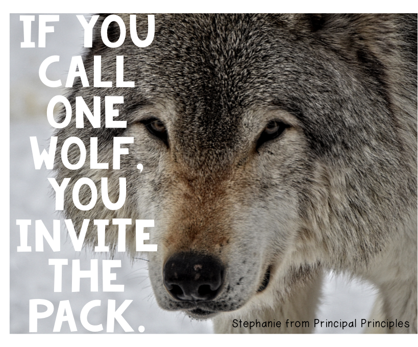 Wolf Quotes About Strength: The Strength Of Your Team-Motivational Quote