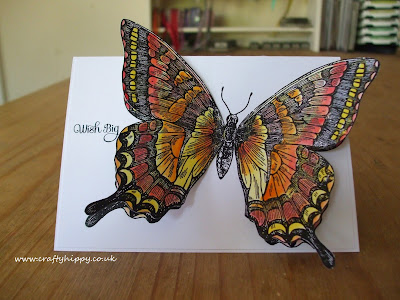 Swallowtail, Stampin' Up! Stampin Up