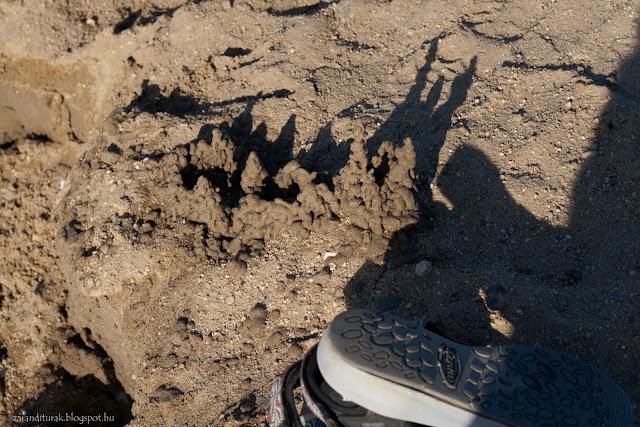 Szandál és homokvár a gyoroki strandon