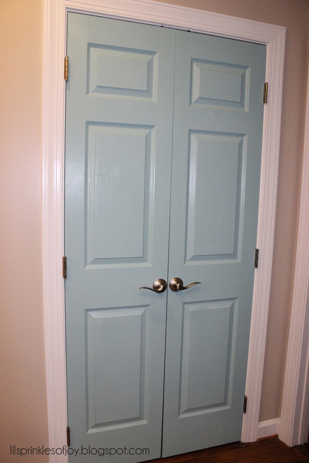 Lil' Sprinkles of Joy: Painted Pantry Door