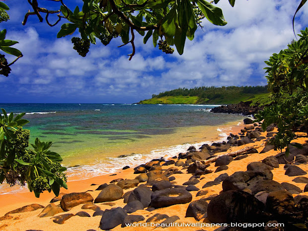 Beautiful Beach Kauai Hawaii