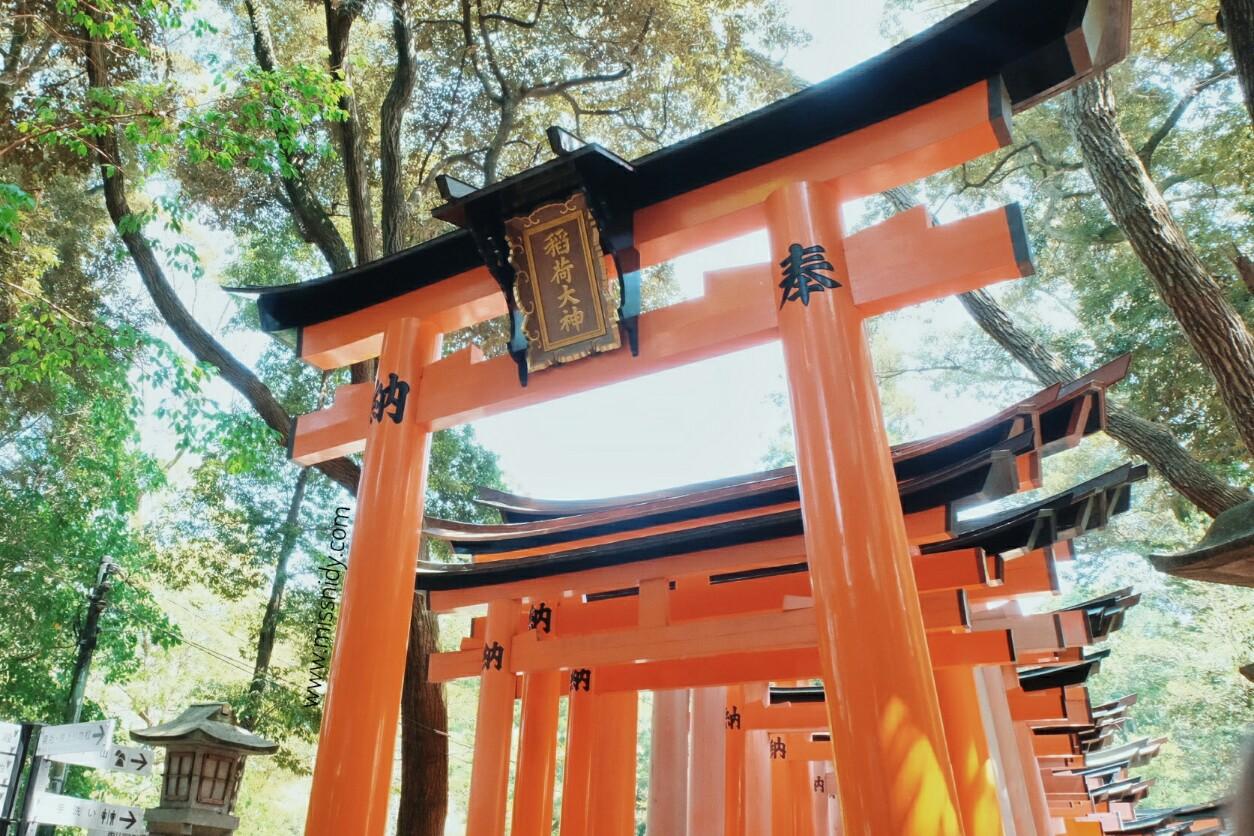 thousand of tori gate in kyoto