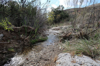 It was nice to see water in the desert. It was good to Fresno Creek flowing