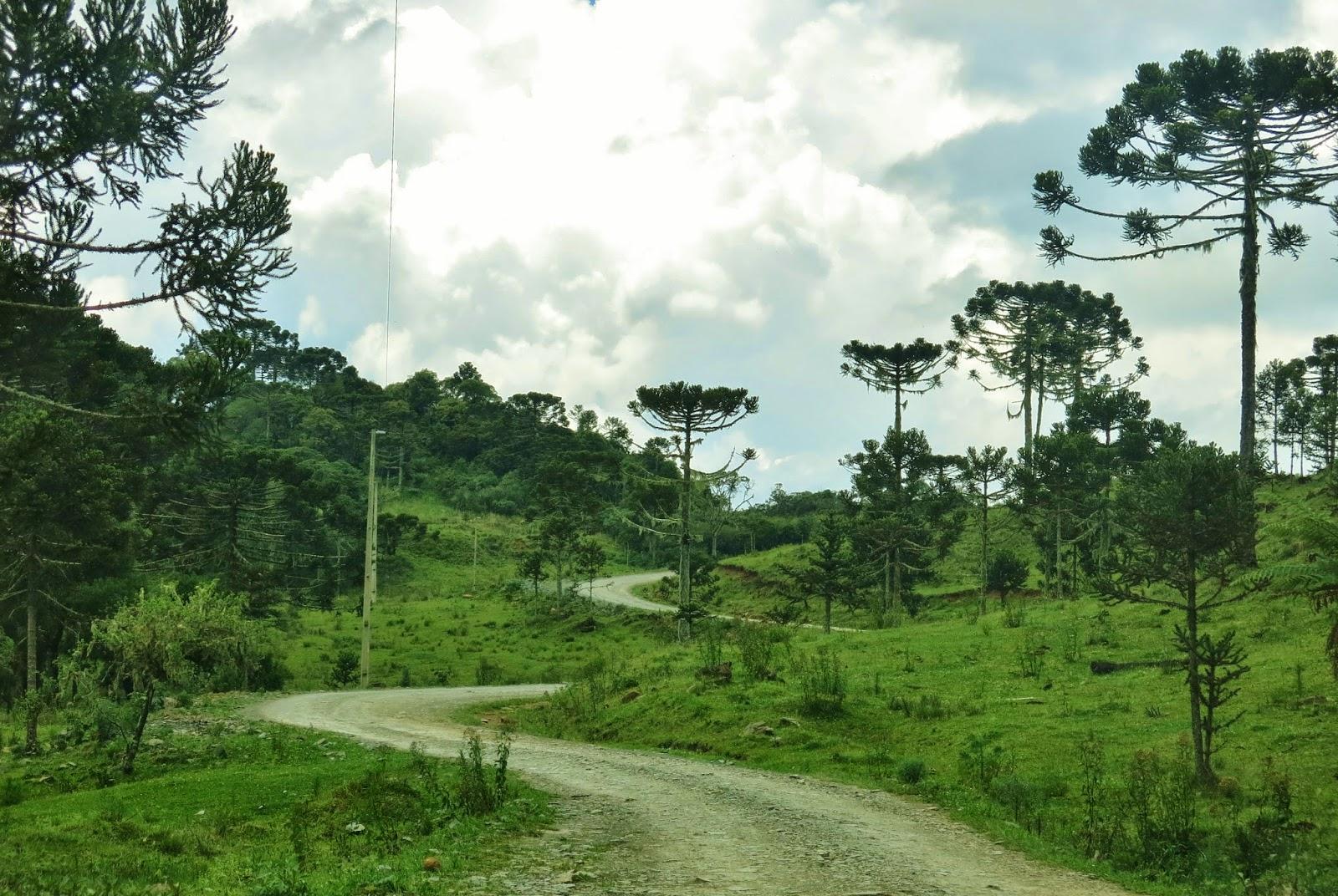Parque Nacional São Joaquim, onde fica o Morro da Igreja