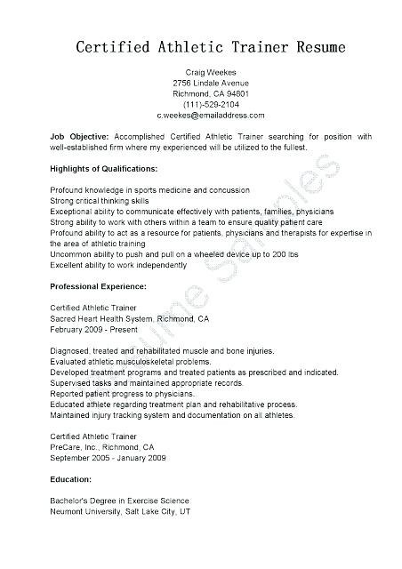 Sample Of Resume Letter 2019 - Resume Templates