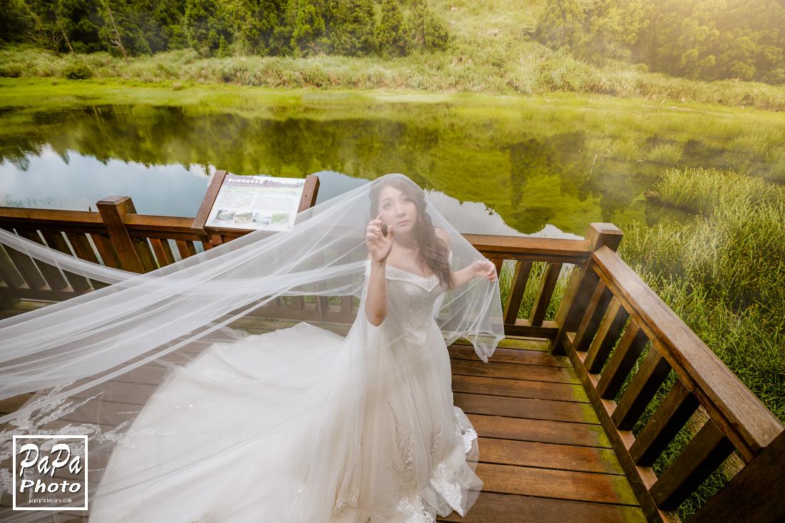 PAPA-PHOTO,自助婚紗,繡球花婚紗,夢幻婚紗,婚紗包套