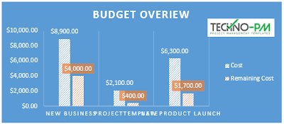 Project Budget Overview
