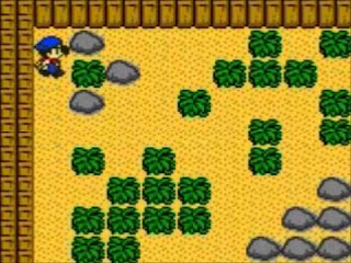 Download Harvest Moon GBC [1,2,3] Untuk Android