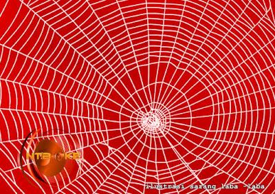 Sarang Laba-laba Mujarab Menutup dan Menyembuhkan Luka
