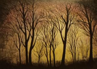 Καμένο Δάσος