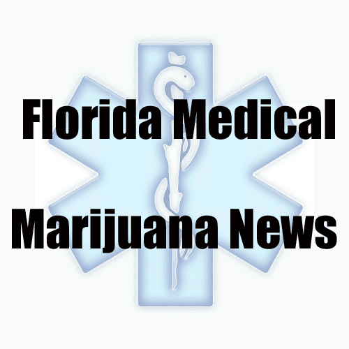 Video From Inside a Legal Florida Medical Marijuana Growhouse