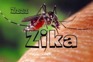 Ketahui lebih dalam tentang virus zika, virus yang dapat membuat anak terlahir cacat