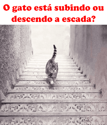 Teste: o gato está subindo ou descendo a escada?