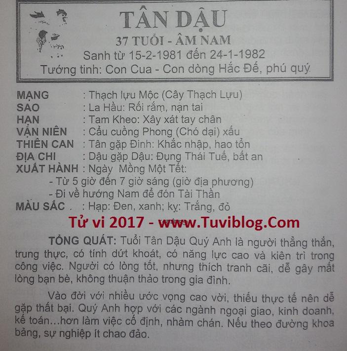 Tu vi Tan Dau 1981 nam mạng