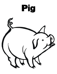 Pig Coloring Pages With Name