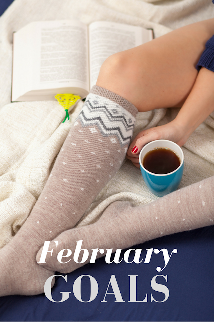 February Goals: January Update + Ways to Make Money (And TOOLS!)