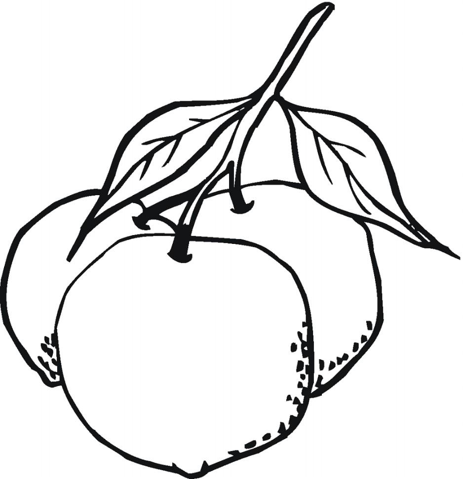 Gambar Mewarnai Sayuran Terbaru · Gambar Mewarnai Cabai Terbaru · Gambar Mewarnai Jeruk Terbaru