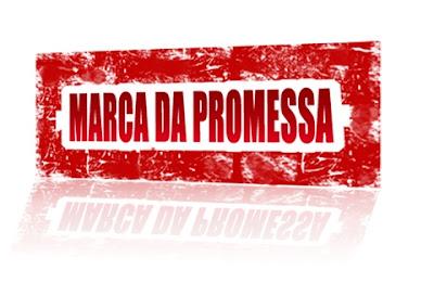 Qual o tamanho da sua promessa?