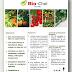 Bio-Chel Fe (11%)