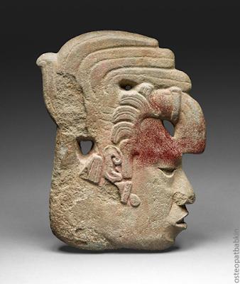 Верхний этаж лицевого черепа