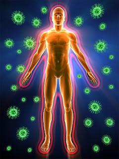 Bağışıklık Sistemi, Vücuda Zararlı Virüs ve Bakteriler