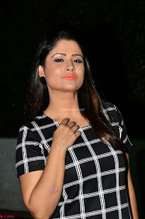 Shilpa Chakravarthy in Dark blue short tight dress At Srivalli Movie Pre Release Event ~ Exclusive Celebrities Galleries 033