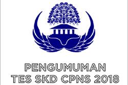 Nasib Peserta CPNS 2018 yang Tak Lolos Tes SKD/SKB akan Segera Diumumkan
