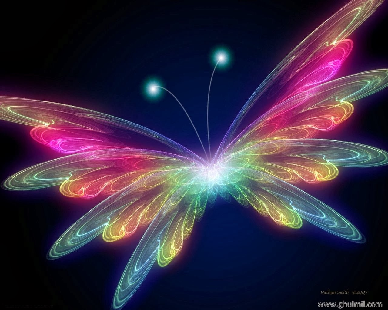 Free live butterfly wallpaper - beautiful desktop wallpapers 2014