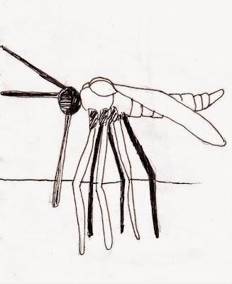 Эвелина Васильева. Памятник комару