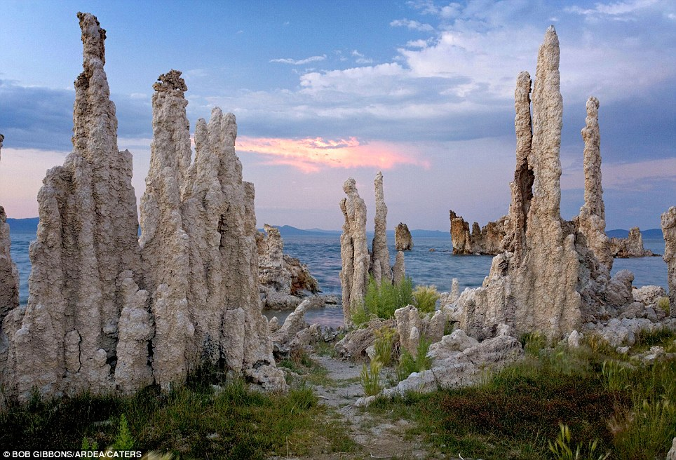 Tufa Pinnacles: (Mono Lake, Sierra Nevada, USA