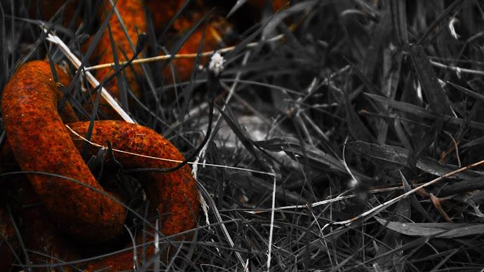 Wallpaper: Grass Chain Rust