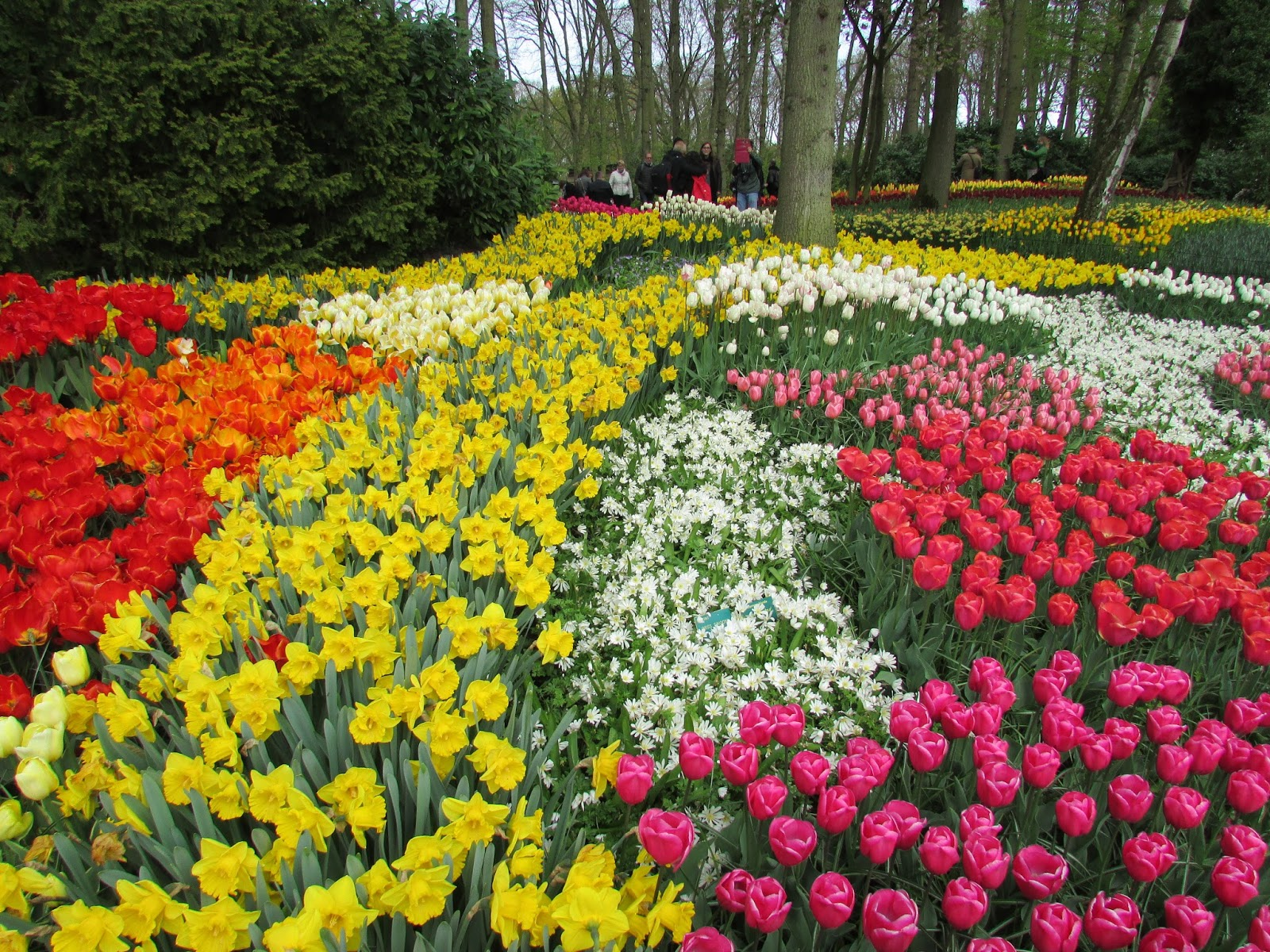 Keukenhof, The Netherlands
