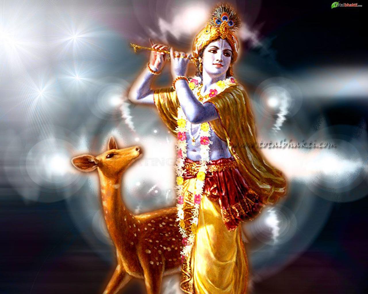 Hindu God Wallpaper Full Hd Rhythm Divine The Krishna Advantage