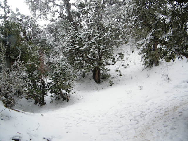 snowfall in deoria tal