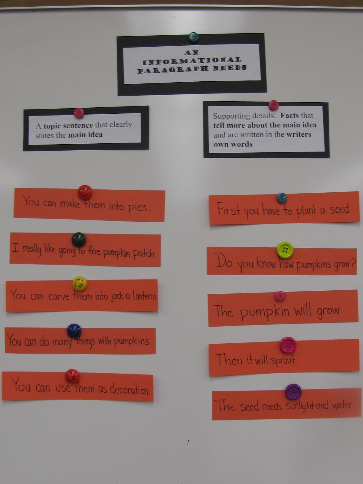 A Love For Teaching Pumpkin Fun Informational Writing