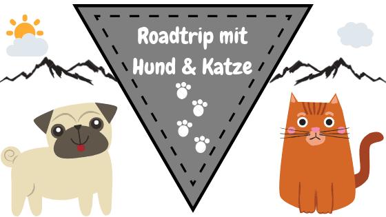 Roadtrip Hund Katze