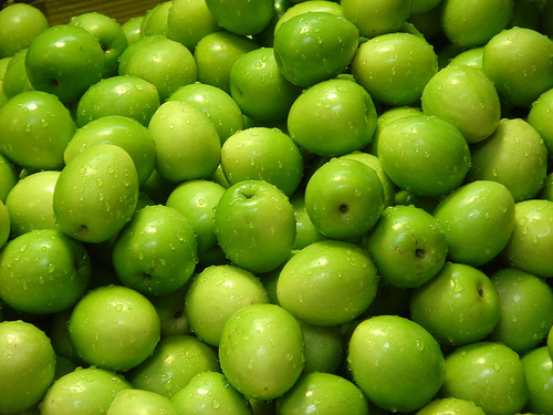 Hasil carian imej untuk buah bidara