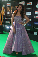 Parul Yadav in Stunning Purple Sleeveless Transparent Gown at IIFA Utsavam Awards 2017  Day 2  Exclusive 09.JPG