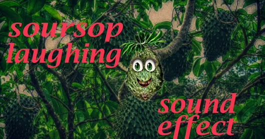 Soursop Fruit Laughing - Sound Effect - Animation