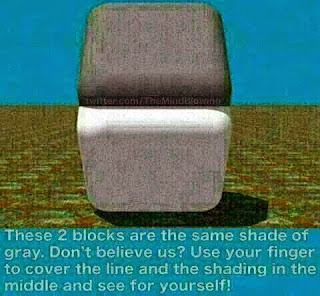 Optical illusion same color Boxes