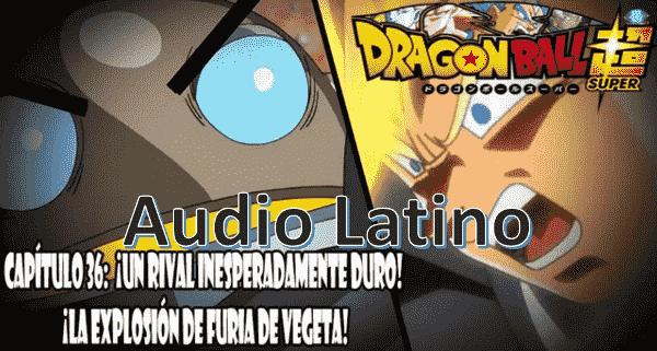 Ver capitulo 36 en audio latino online, Magetta tiene acorralado a Vegetta a causa de la nueva barrera que champa impuso.