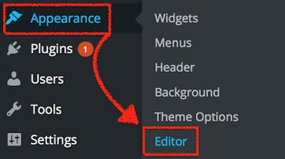 Wordpress Appearance and Theme Editor