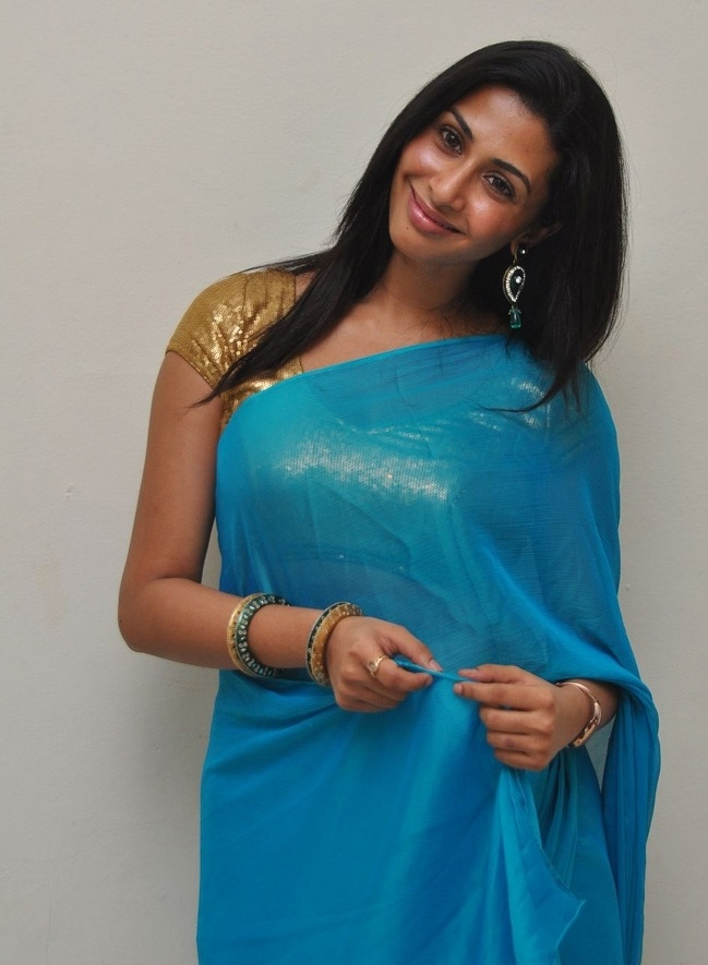Kannada Actress Gayathri Iyer Hot Stills In Blue Saree