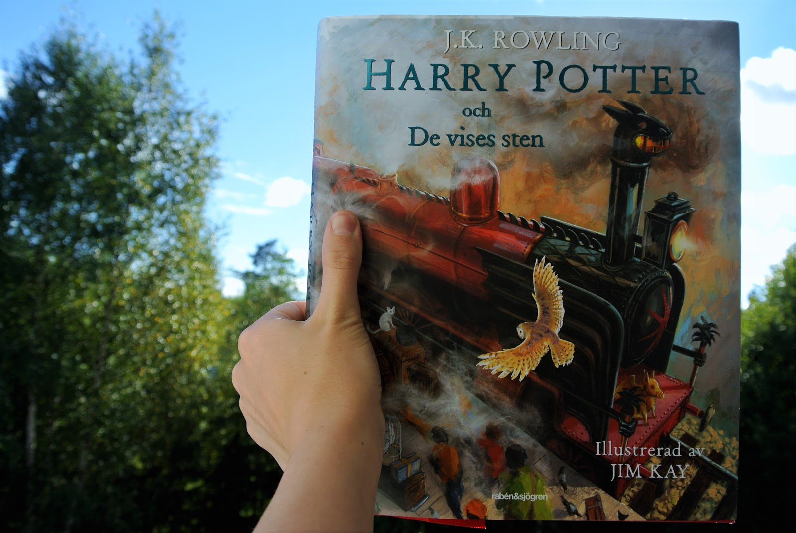 Harry Potter Och De Vises Sten Book