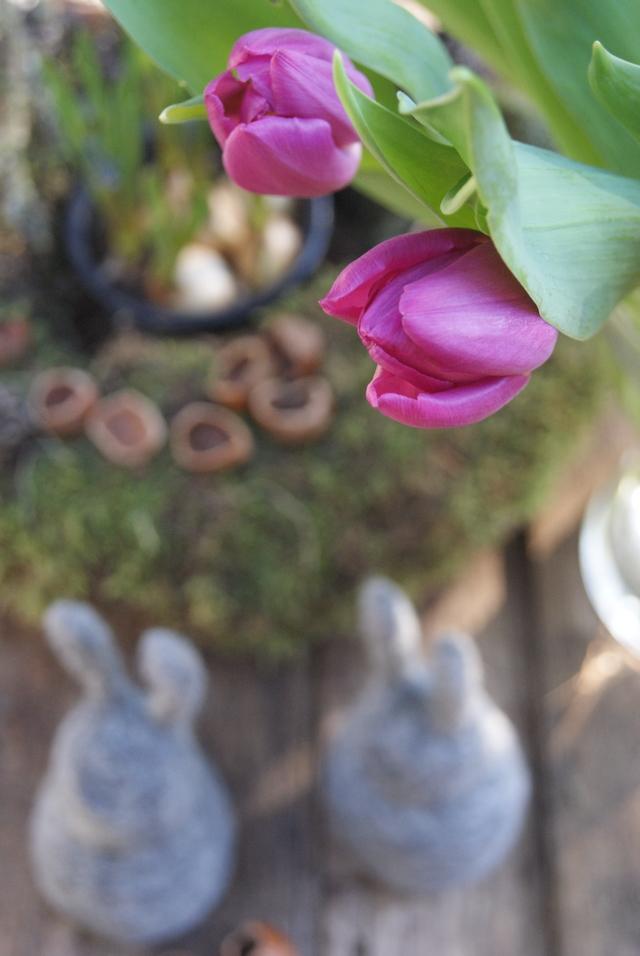 Mooskranz mit Haselnusschalen, Tulpen und Osterhasen aus Filz