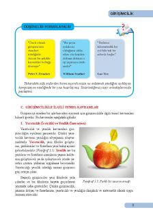 Girişimcilik Ders Kitabı Cevapları Sistem Yayınları Sayfa 9