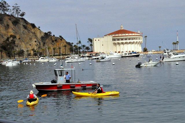 Kayaks Harbor Patrol Catalina