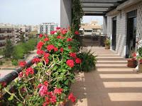 duplex en venta calle rio nalon castellon terraza