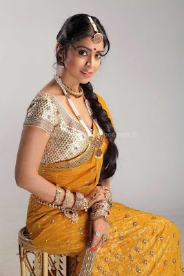 Shriya saran navel pics in saree