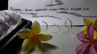 Jual Bulu Perindu Asli Kalimantan Murah